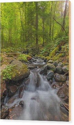 Not-so-dry Creek Wood Print by David Gn