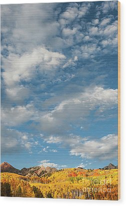 Wood Print featuring the photograph Nothin' But Blue Skies by The Forests Edge Photography - Diane Sandoval