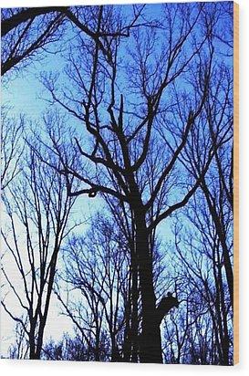 Nothing But Blue Skies Wood Print