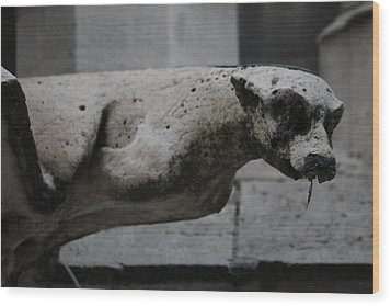 Wood Print featuring the photograph Notre Dame Bat Gargoyle by Christopher Kirby