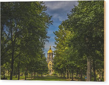 Notre Dame University 2 Wood Print by David Haskett