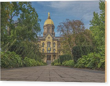 Notre Dame University Q Wood Print by David Haskett