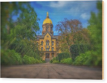 Notre Dame University Q2 Wood Print by David Haskett