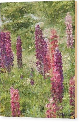 Nova Scotia Lupine Flowers Wood Print by Jeff Kolker