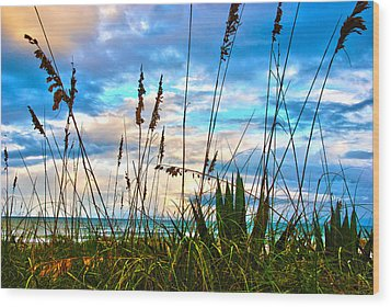 November Day At The Beach In Florida Wood Print
