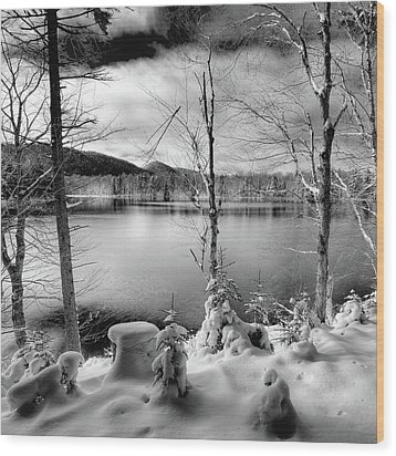 November On West Lake Wood Print by David Patterson