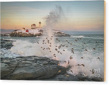 Nubble Wave With Sandpipers Wood Print by Benjamin Williamson