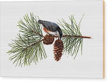 Nuthatch 1 Wood Print