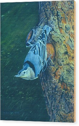 Nuthatch Wood Print by Bob Nolin