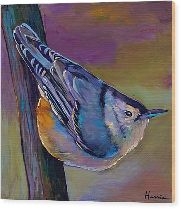 Nuthatch Wood Print by Johnathan Harris