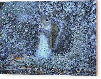 Wood Print featuring the photograph Nuts Anyone by Deborah Benoit