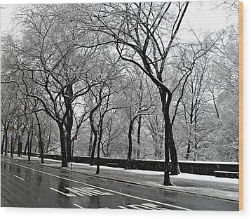 Wood Print featuring the photograph Nyc Winter Wonderland by Vannetta Ferguson