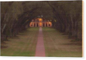 Oak Alley Plantation Wood Print by Jonas Wingfield