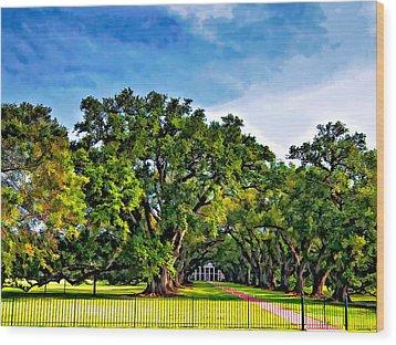 Oak Alley Plantation Wood Print by Steve Harrington
