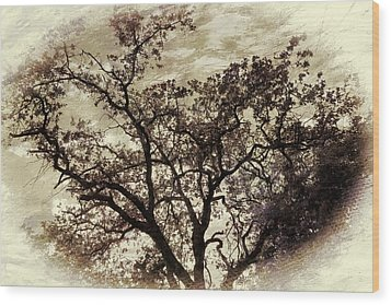 Wood Print featuring the photograph Oak Tree by Athala Carole Bruckner