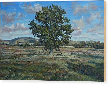 Oak Tree In The Vale Of Pewsey Wood Print by Andrew Taylor