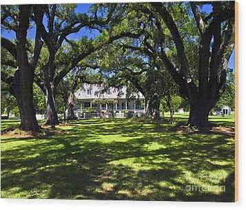 Wood Print featuring the photograph Oakland Plantation One by Ken Frischkorn