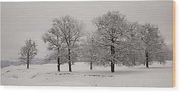 Oaks In Winter Wood Print by Gabriela Insuratelu