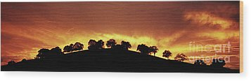 Wood Print featuring the photograph Oaks On Hill At Sunset by Jim and Emily Bush