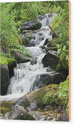 Wood Print featuring the photograph Oasis Cascade by David Chandler