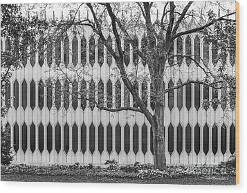 Oberlin College Bibbins Hall Wood Print by University Icons