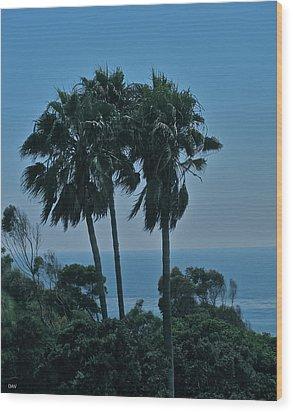 Ocean Brezze Palms Wood Print