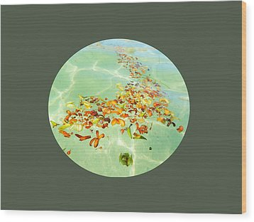 Wood Print featuring the photograph Ocean Flowers Oval by Linda Hollis