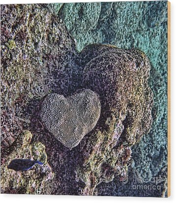 Ocean Love Wood Print by Peggy Hughes
