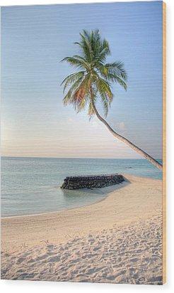 Ocean Palm Wood Print