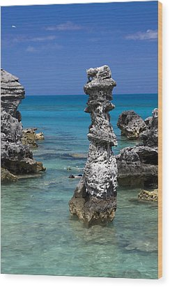 Ocean Rock Formations Wood Print by Sally Weigand