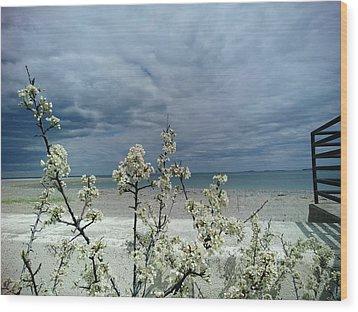Ocean Spring Wood Print