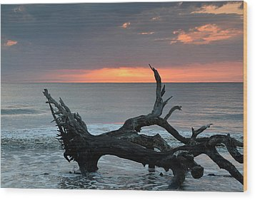 Ocean Treescape At Sunrise Wood Print by Bruce Gourley