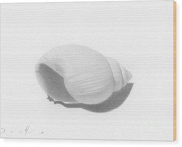 Ocean's Treasure Wood Print