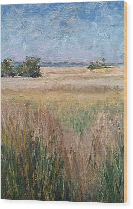 Wood Print featuring the painting Ochlockonee Marsh by Pam Talley