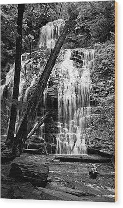 Oconee Station Falls IIi Wood Print
