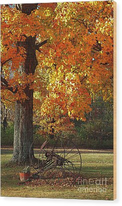 Wood Print featuring the drawing October Day by Diane E Berry