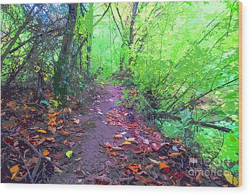 October Forest Pathway Wood Print