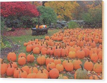 October Harvest Wood Print by John Burk
