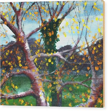 October In Leitrim Wood Print by Jean Davies