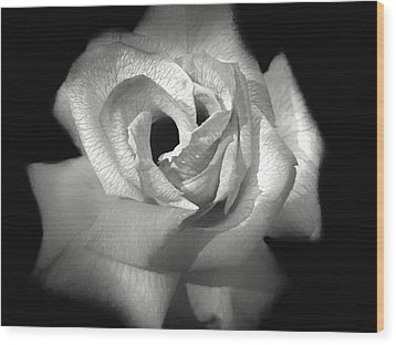 Wood Print featuring the photograph October Rose by Donna Kennedy