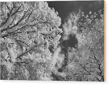 October Sky Ir Wood Print