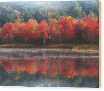 October Trees - Autumn  Wood Print by MTBobbins Photography