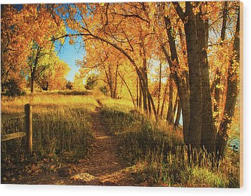 Wood Print featuring the photograph October's Light by John De Bord
