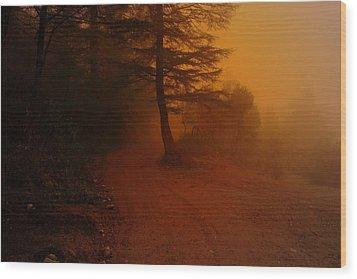 Off The Beaten Path Wood Print by Salman Ravish