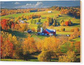 Ohio Amish Country Wood Print
