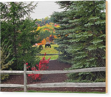 Wood Print featuring the photograph Ohio Farm In Autumn by Joan  Minchak