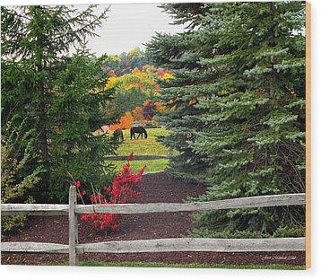Ohio Farm In Autumn Wood Print