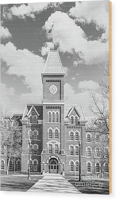 Ohio State University Hall Wood Print by University Icons