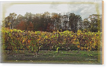 Wood Print featuring the photograph Ohio Winery In Autumn by Joan  Minchak