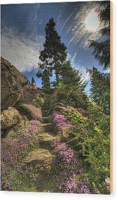 Ohme Gardens Wood Print